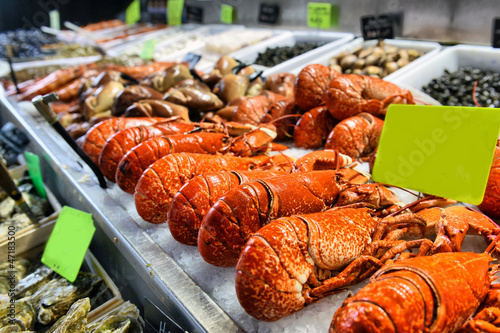 Aluminium Prints Seafoods showcase of seafood