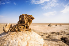 Desert Rose In Chott El Djerid - Salt Lake In Tunisia