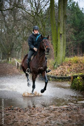 Acrylic Prints Horseback riding Equestrian Rider and Horse