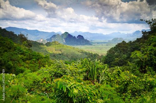 las-deszczowy-parku-narodowego-khao-sok