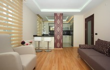 Open Style Kitchen And Living ...
