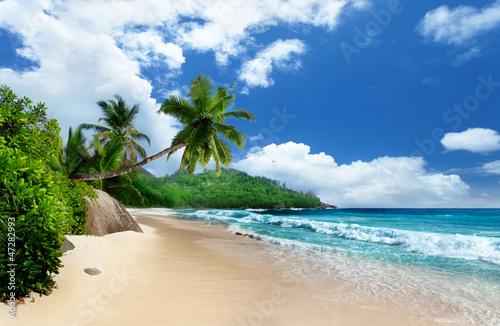 Poster Tropical plage beach at Mahe island, Seychelles