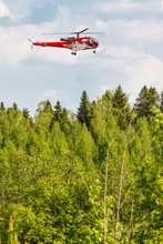 Helicopter (Sud Aviation SA316B Alouette III) In A Forest