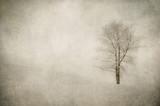 grunge obraz zimowego krajobrazu - 47292500