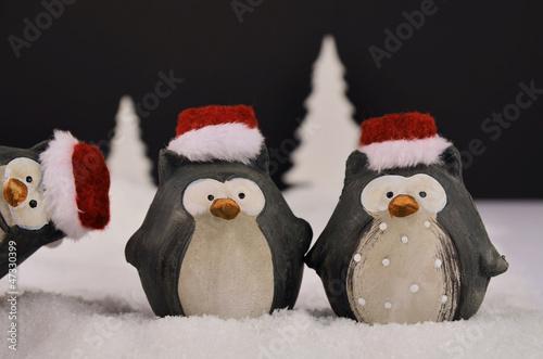 Fotografie, Obraz  Weihnachtseulen