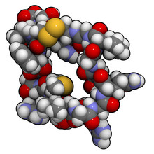 Atrial Natriuretic Peptide (ANP) Or Factor (ANF) Molecule, Chemi
