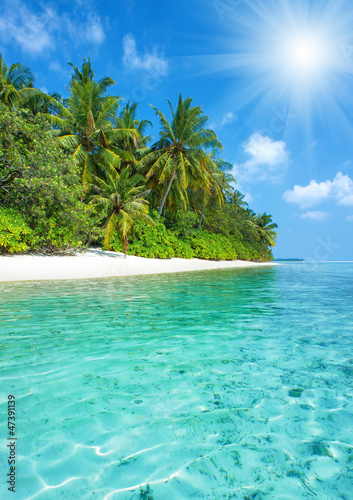 Photo Stands Turquoise tropical island beach with perfect sky