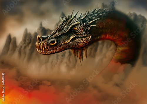 Fotografie, Obraz Dragon in the fire