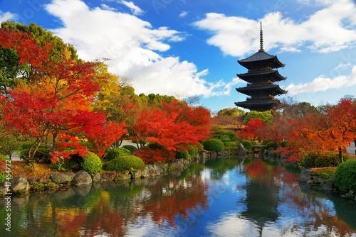 Fototapeta Japonia   toji-pagoda-w-kyoto-japonia