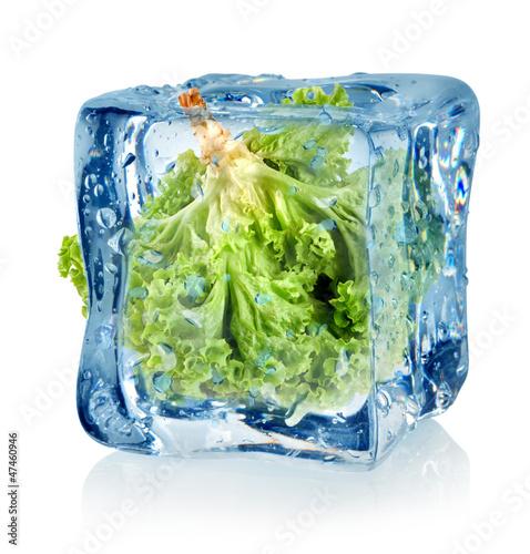 Staande foto In het ijs Ice cube and lettuce