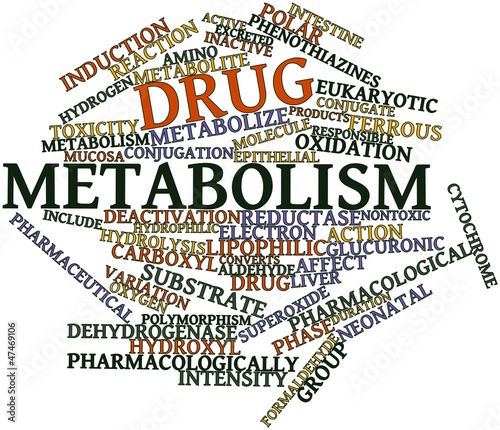 Photo Word cloud for Drug metabolism