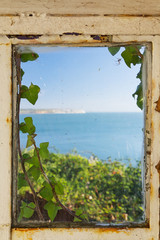 Fototapeta View of the sea through an ivy covered window frame