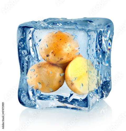 Staande foto In het ijs Ice cube and potato