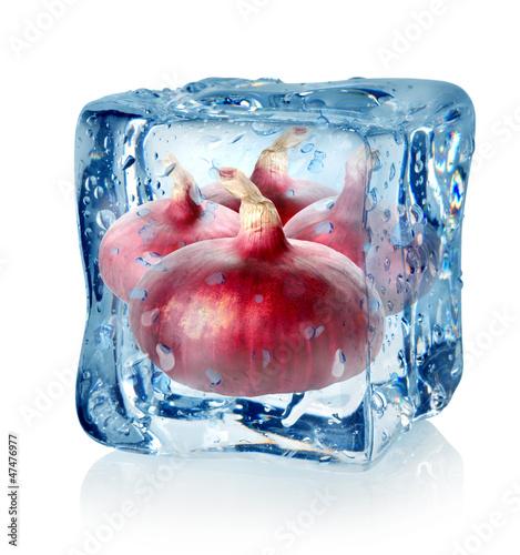 Staande foto In het ijs Ice cube and red onion