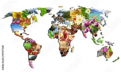 Wall Murals World Map map of the world of the many photographs