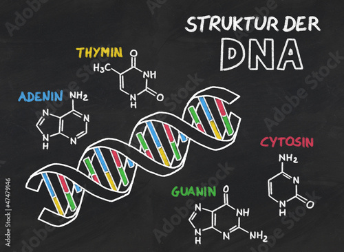 struktura-dna-z-lupkow