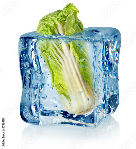 Staande foto In het ijs Ice cube and chinese cabbage