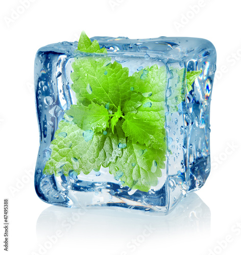 Ice cube and mint