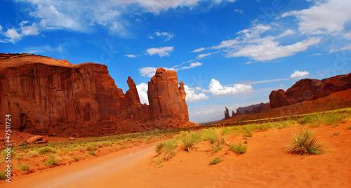 Fotografie, Obraz  Monument Valley Landscape