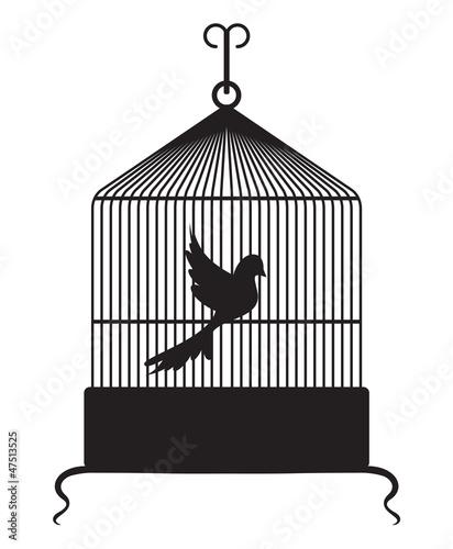 In de dag Vogels in kooien Bird cage