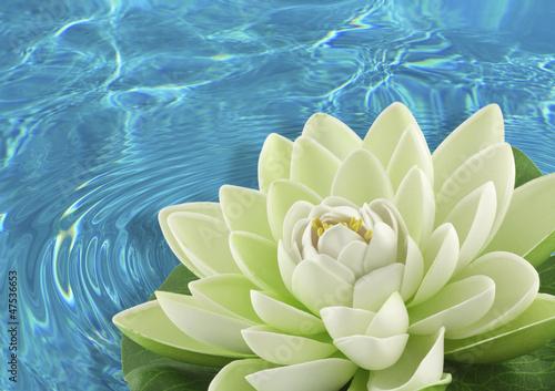 fleur artificielle nénuphar blanc - 47536653
