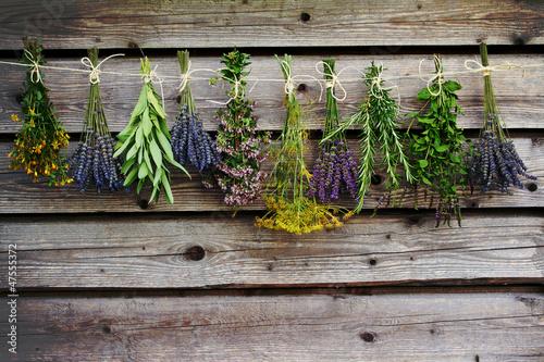 Fototapeta premium Zioła suszące na drewnianej stodole w ogrodzie