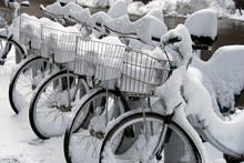 Rent A Bike In Snow