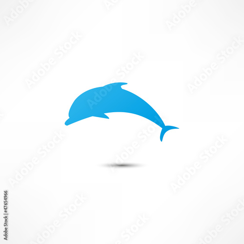 Staande foto Dolfijnen Dolphin