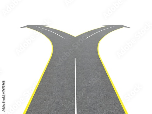 Road bifurcation Canvas-taulu