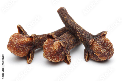 Photo  Carnation (spices)