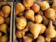 Boxes Of Organic Bosc Pears Fo...