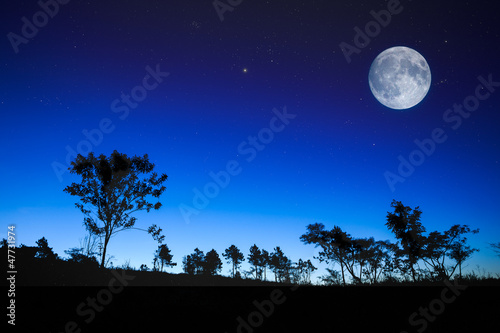 Fotobehang Volle maan Night sunrise landscape with the moon, trees silhouette, stars