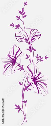 piekne-ozdobne-kwiaty-na-bialym-tle
