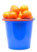 Fresh Tangerines In A Bucket