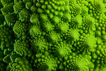 Romanesco Broccoli Cabbage Marco