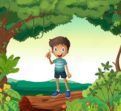 Fotobehang Fantasie Landschap A boy standing on wood in nature