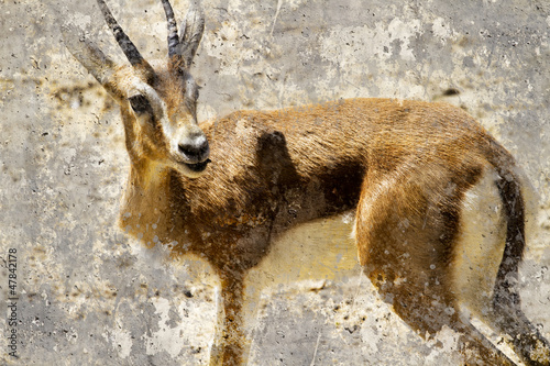 artystyczny-wizerunek-z-tlo-tekstura-gazela