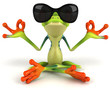 canvas print picture Fun frog