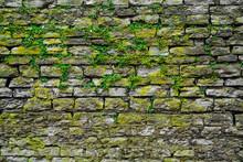 Stone Gray Extruding Bricks