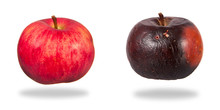 Red And Rotten Apples Isolated