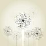 Flower a dandelion