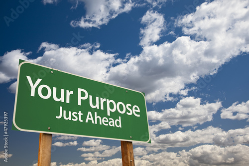 Your Purpose Green Road Sign Poster