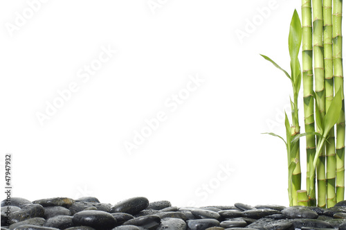 Spa still life with bamboo grove and pebble