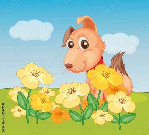 Poster Dogs A dog and flower plant