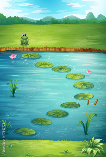 Poster de jardin Sous-marin A frog and a lake
