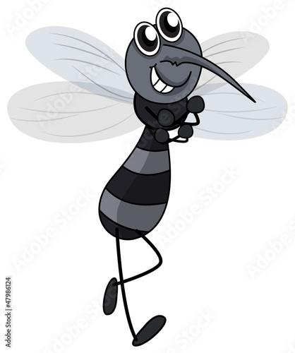Foto auf AluDibond Ziehen A smiling mosquito