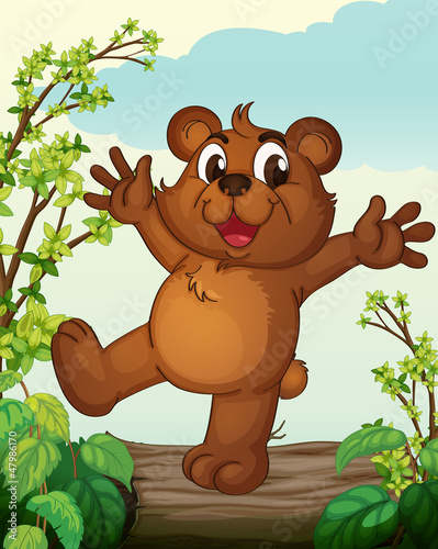 La pose en embrasure Forets enfants A smiling bear