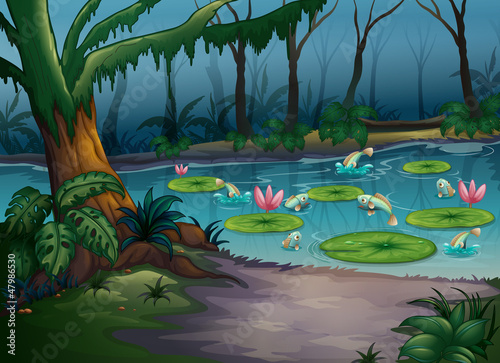 Canvas Prints River, lake Fishes in the jungle
