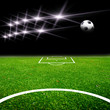soccer field with light
