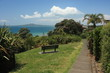 view of Rangitoto Island over tropical garden